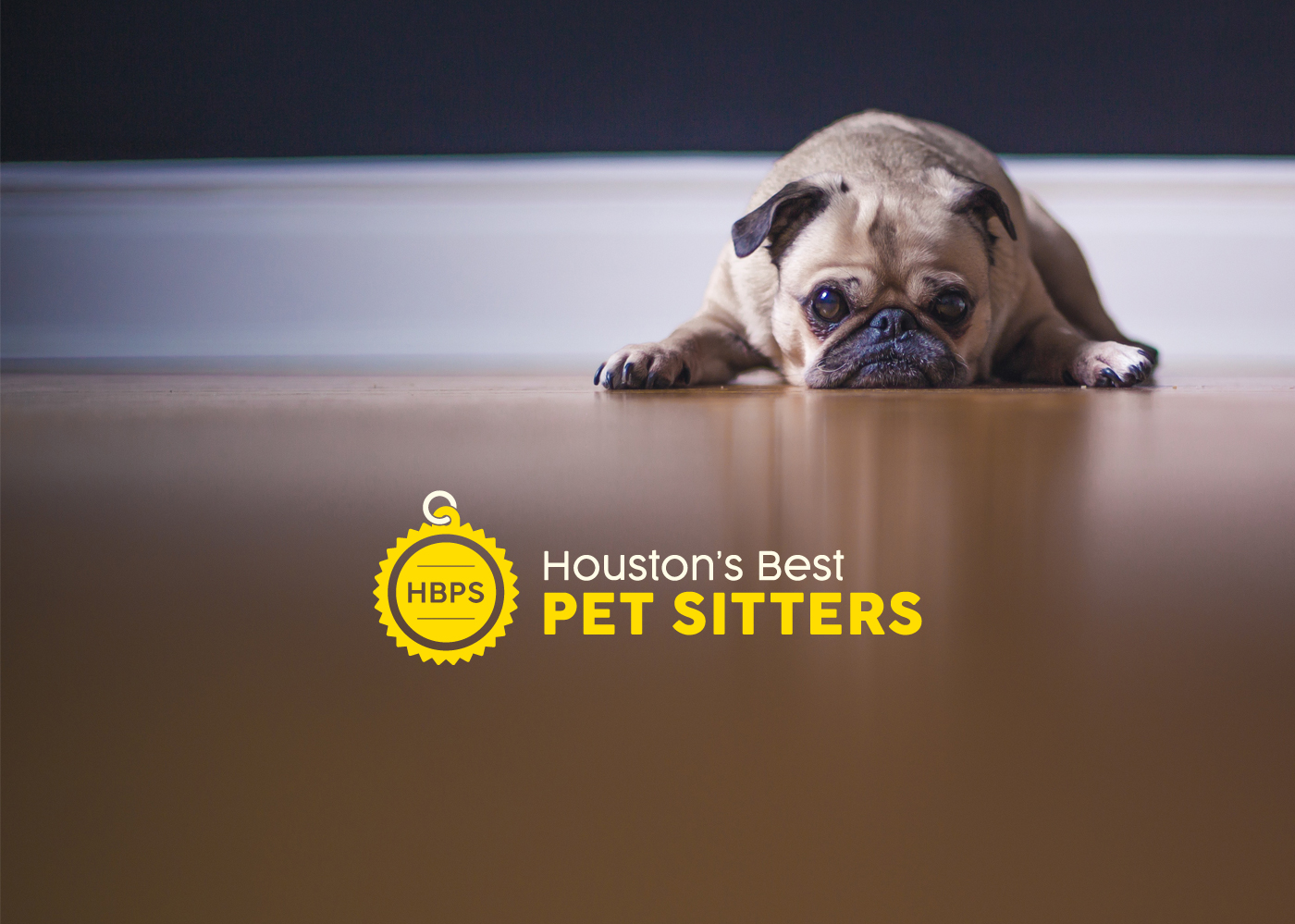 Houston's Best Pet Sitters website designed by Bellaworks Web Design